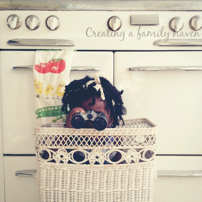 basket fun 2- creating a family haven course